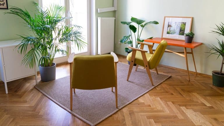 Parquet wooden floor with a rug